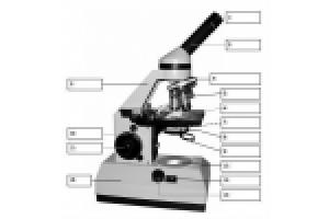Beschriftung Mikroskop