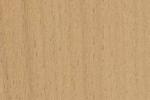 Holzarten Erkennen holzarten erkennen